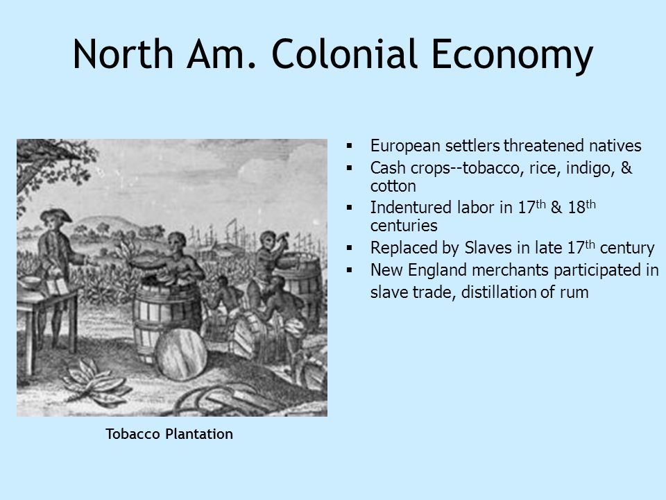 North Am. Colonial Economy