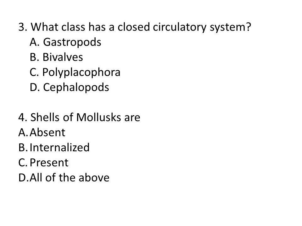 3. What class has a closed circulatory system