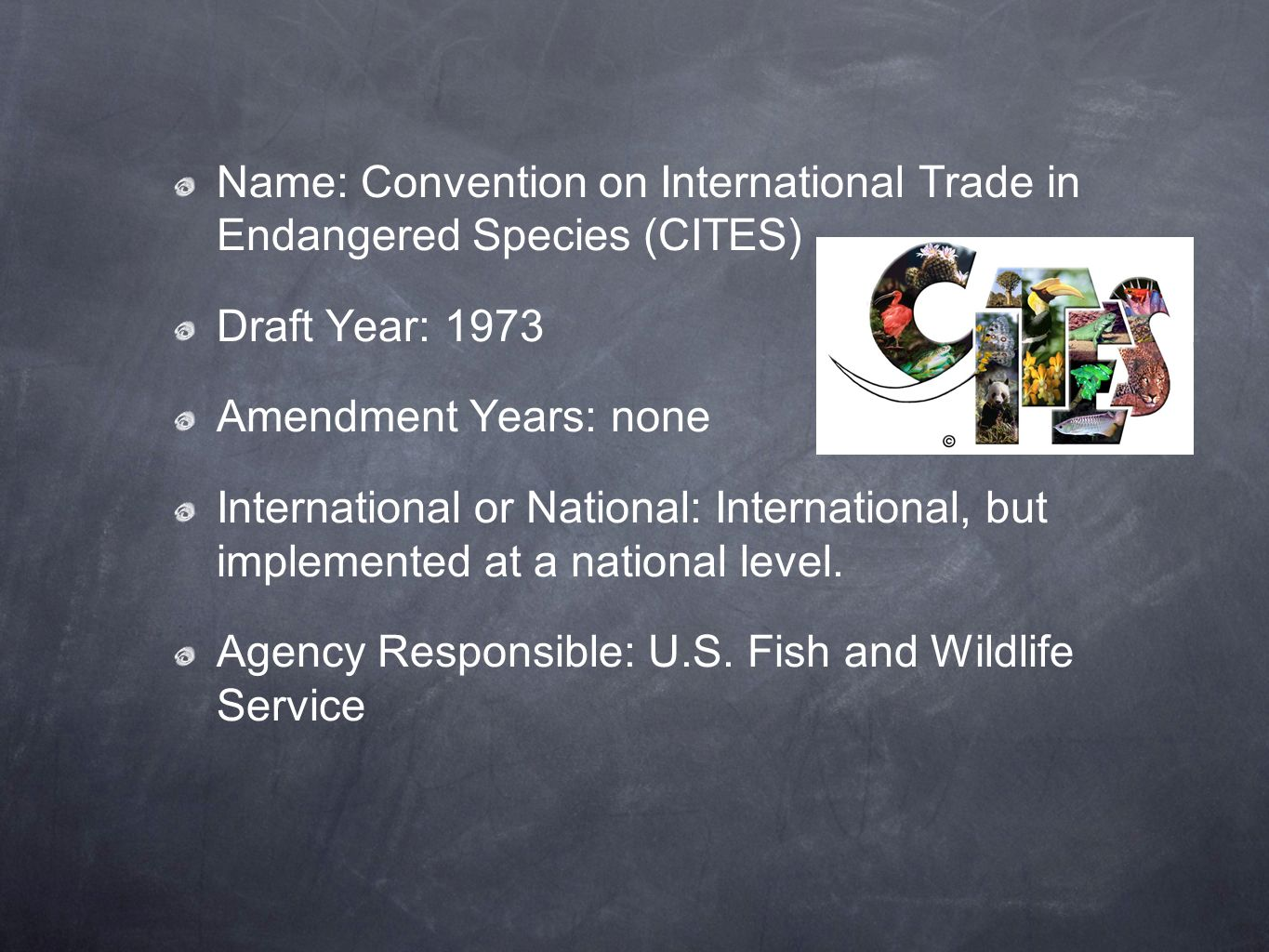 Name: Convention on International Trade in Endangered Species (CITES)