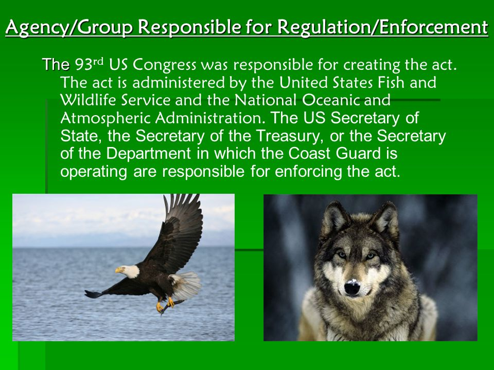 Agency/Group Responsible for Regulation/Enforcement