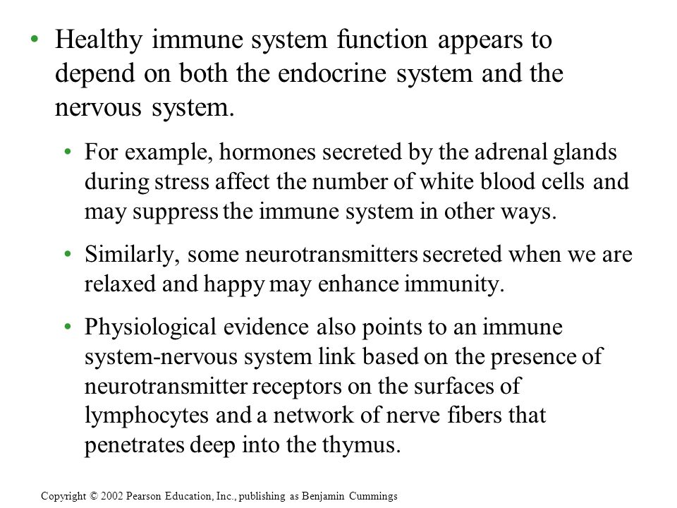 Healthy immune system function appears to depend on both the endocrine system and the nervous system.