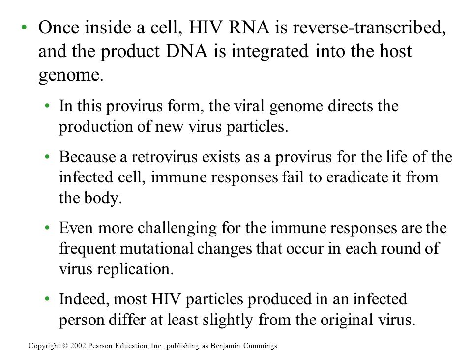 Once inside a cell, HIV RNA is reverse-transcribed, and the product DNA is integrated into the host genome.
