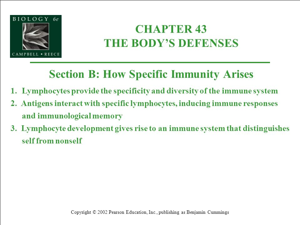 CHAPTER 43 THE BODY'S DEFENSES Section B: How Specific Immunity Arises