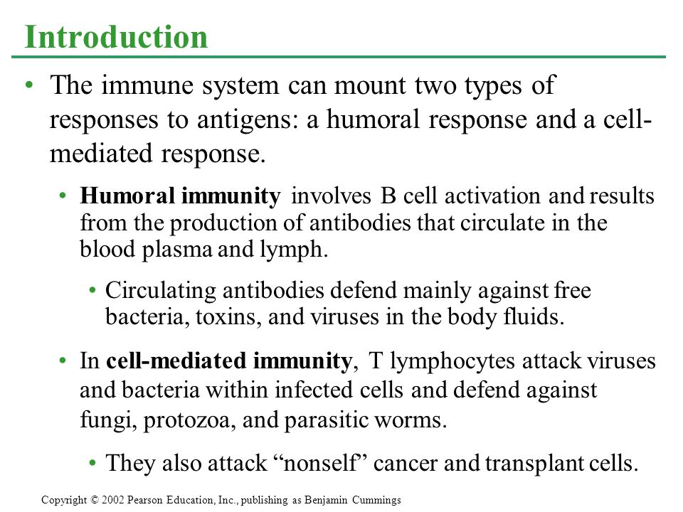 Introduction The immune system can mount two types of responses to antigens: a humoral response and a cell- mediated response.