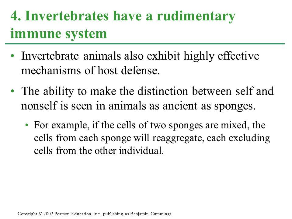 4. Invertebrates have a rudimentary immune system
