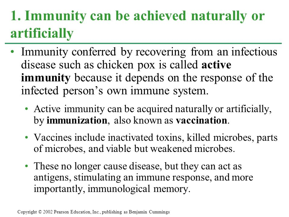 1. Immunity can be achieved naturally or artificially