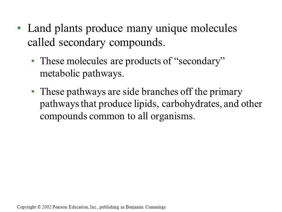 Land plants produce many unique molecules called secondary compounds.