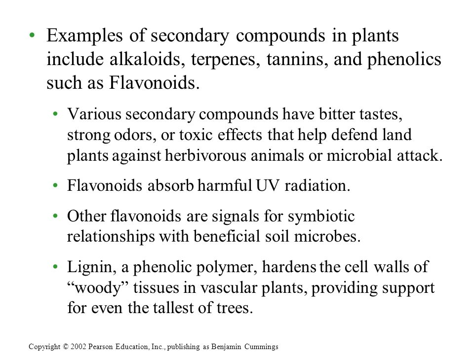 Examples of secondary compounds in plants include alkaloids, terpenes, tannins, and phenolics such as Flavonoids.