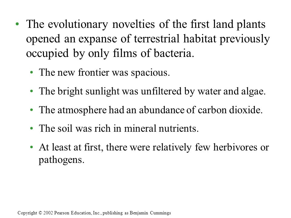 The evolutionary novelties of the first land plants opened an expanse of terrestrial habitat previously occupied by only films of bacteria.