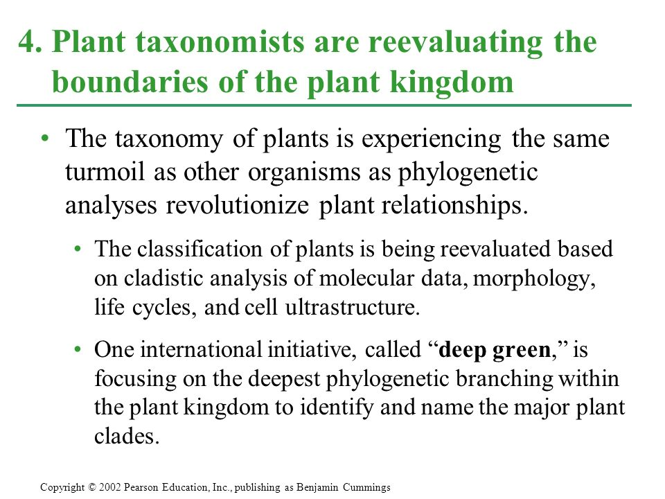 4. Plant taxonomists are reevaluating the boundaries of the plant kingdom
