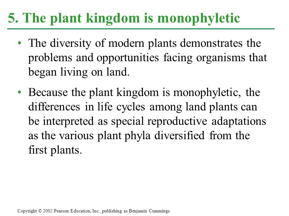 5. The plant kingdom is monophyletic