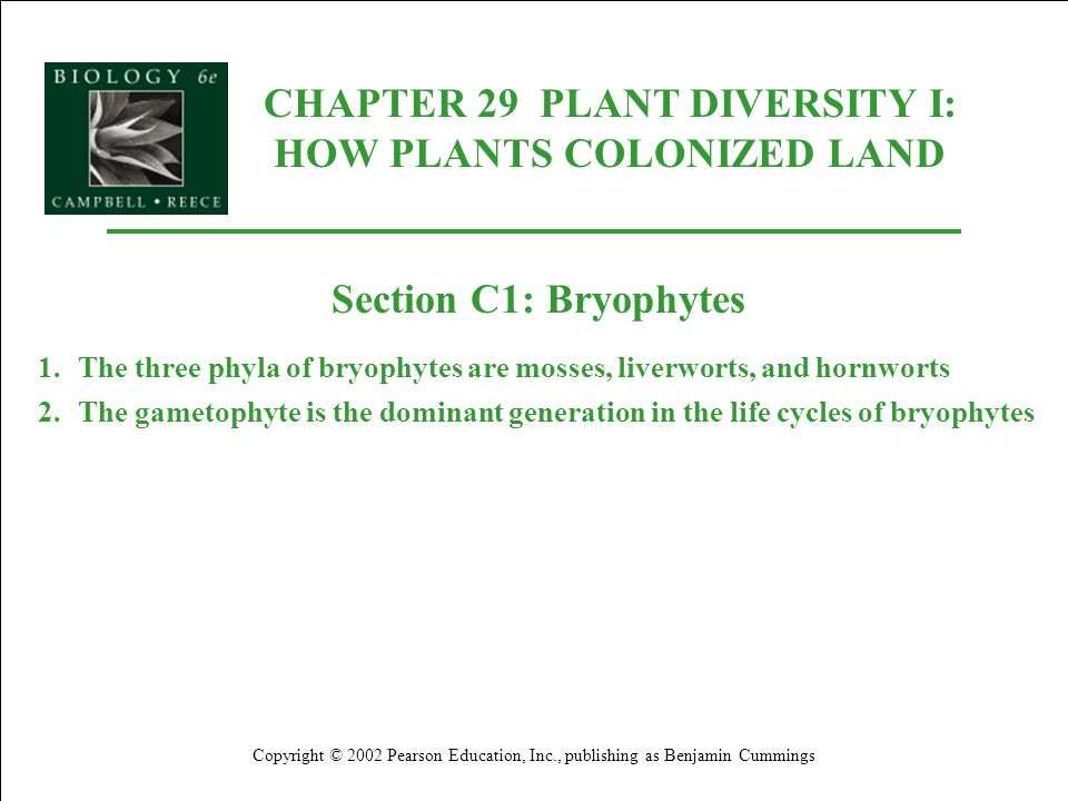 CHAPTER 29 PLANT DIVERSITY I: HOW PLANTS COLONIZED LAND