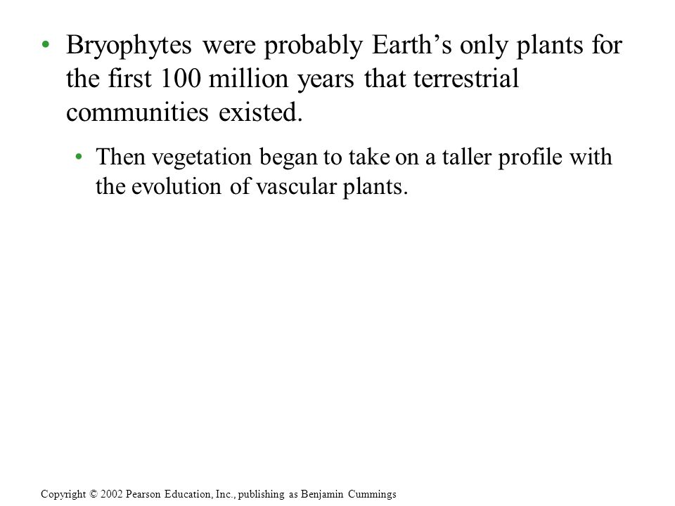 Bryophytes were probably Earth's only plants for the first 100 million years that terrestrial communities existed.