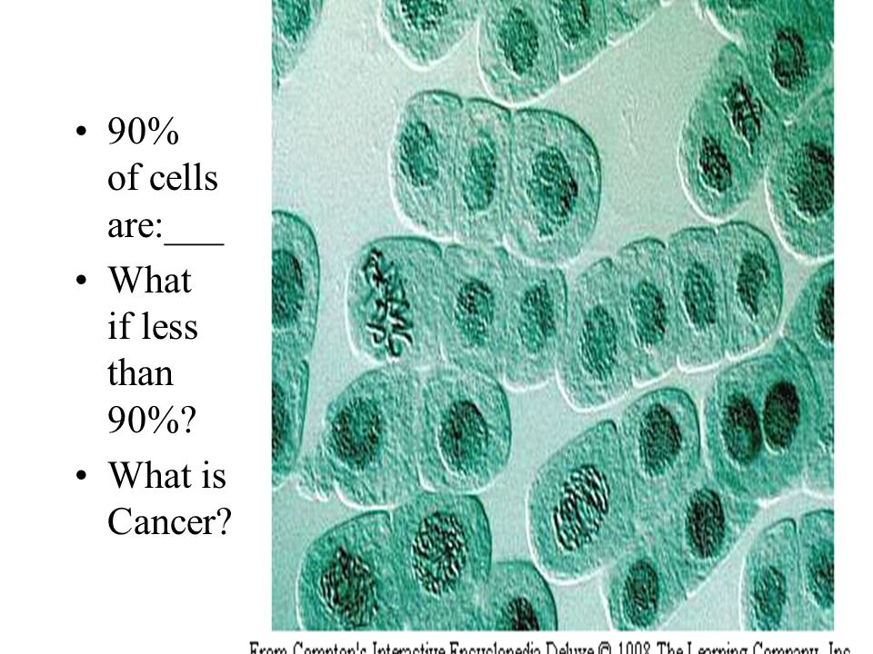 90% of cells are:___ What if less than 90% What is Cancer