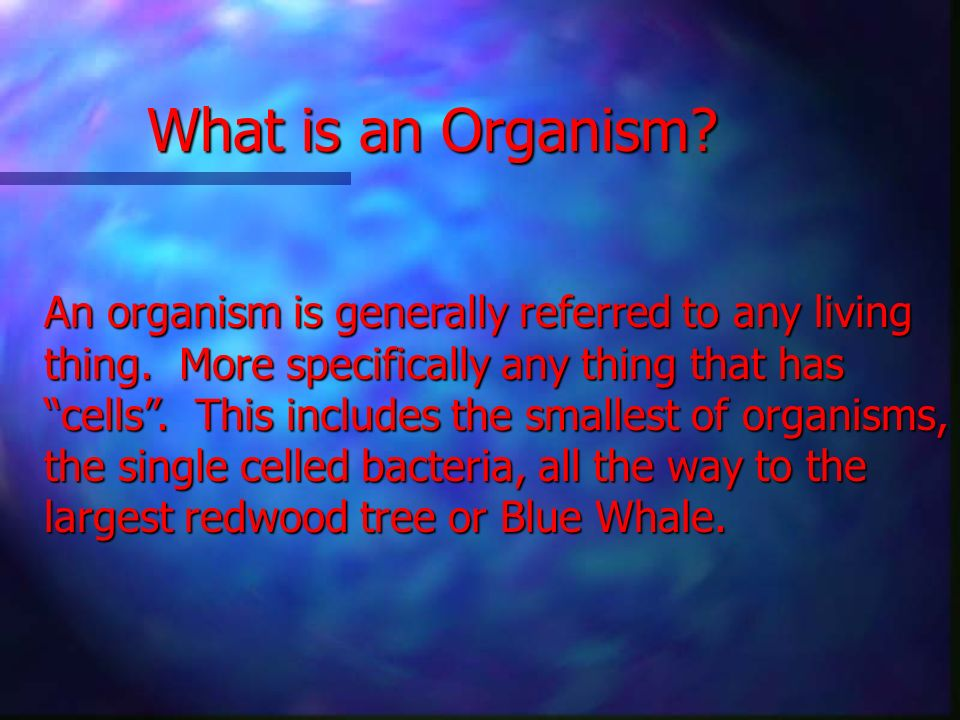 What is an Organism An organism is generally referred to any living