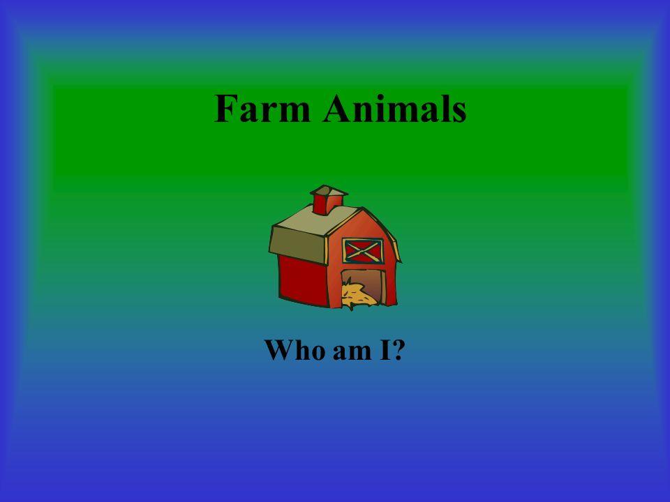 Farm Animals Who am I