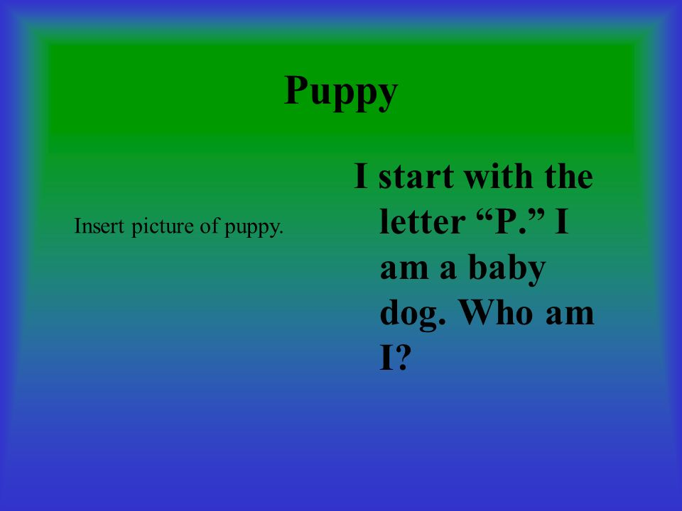 Puppy I start with the letter P. I am a baby dog. Who am I