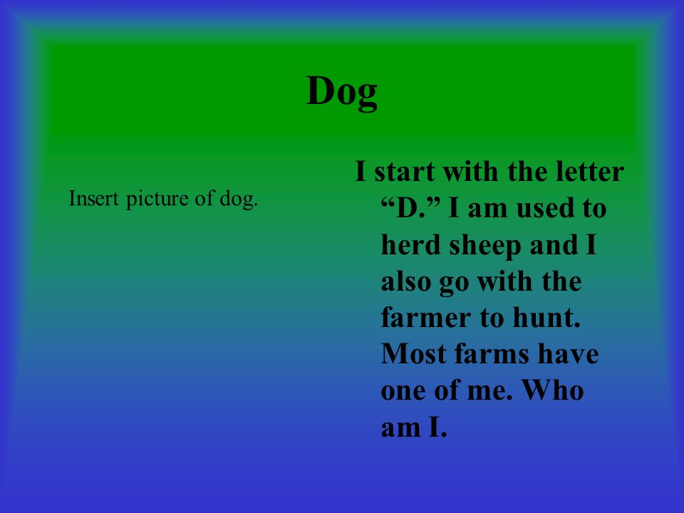 Dog I start with the letter D. I am used to herd sheep and I also go with the farmer to hunt. Most farms have one of me. Who am I.