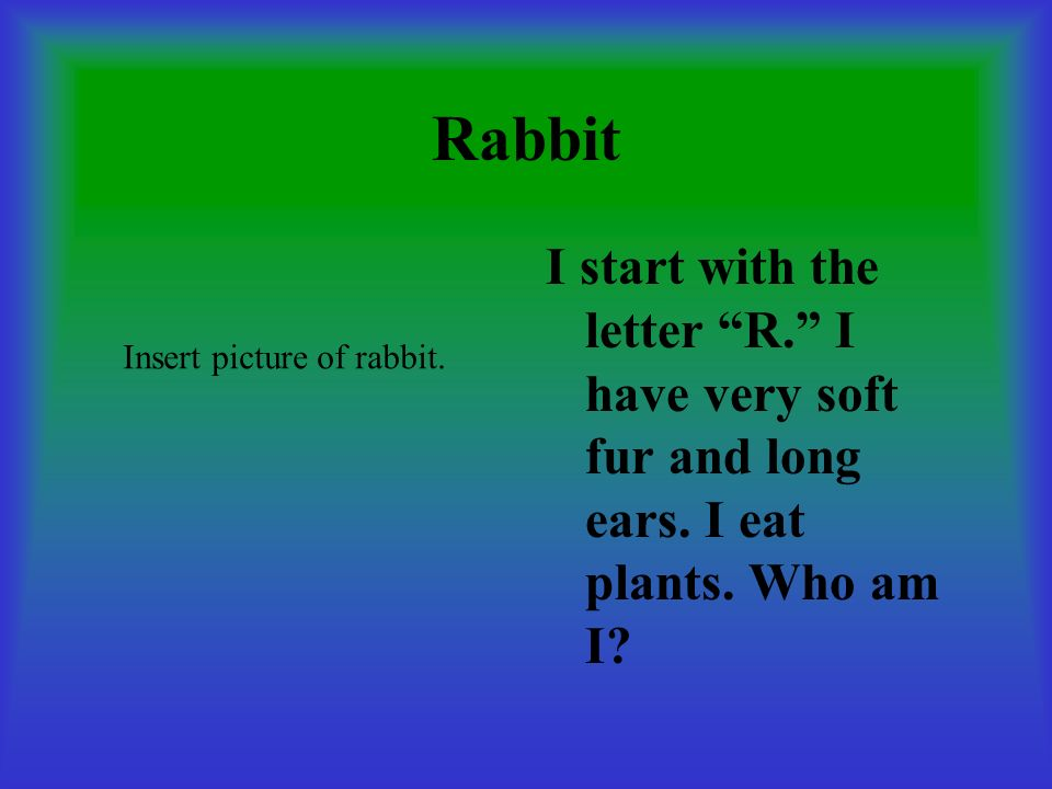Rabbit I start with the letter R. I have very soft fur and long ears.