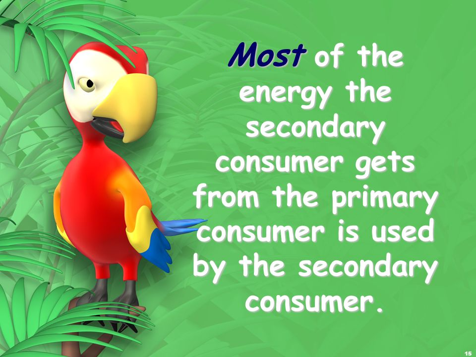 Most of the energy the secondary consumer gets from the primary consumer is used by the secondary consumer.