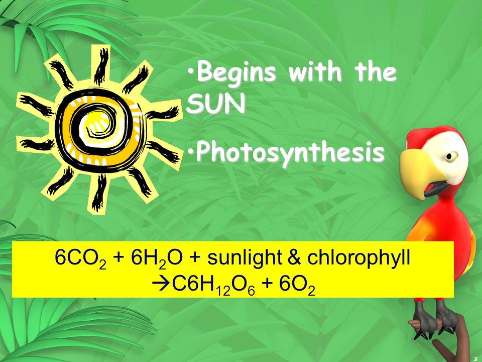6CO2 + 6H2O + sunlight & chlorophyll C6H12O6 + 6O2