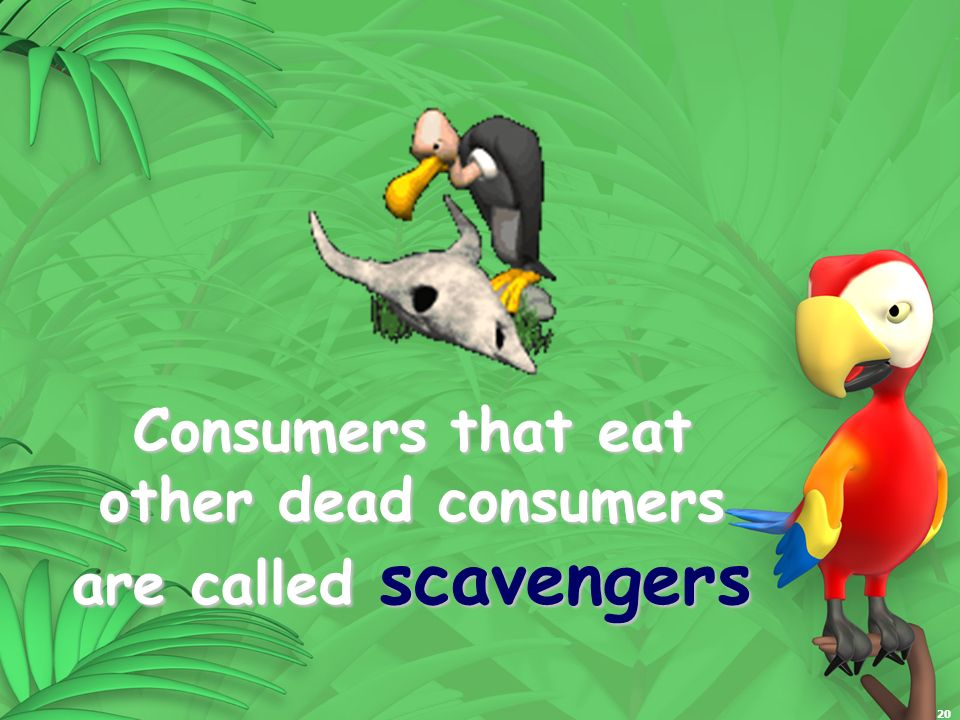 Consumers that eat other dead consumers are called scavengers