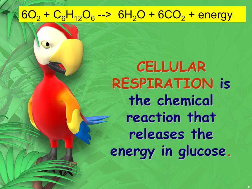 6O2 + C6H12O6 --> 6H2O + 6CO2 + energy