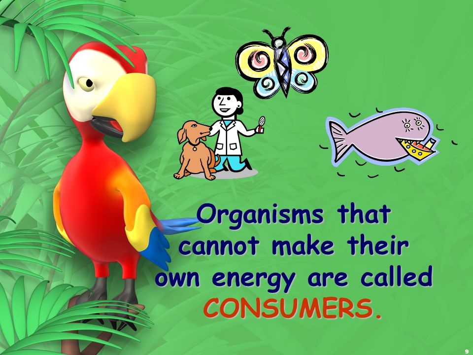 Organisms that cannot make their own energy are called CONSUMERS.