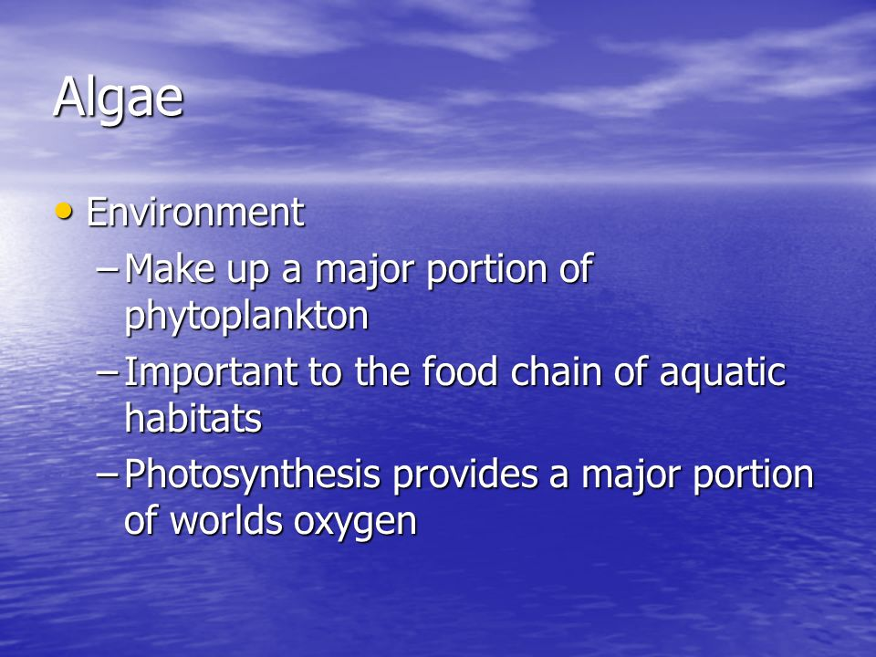 Algae Environment Make up a major portion of phytoplankton