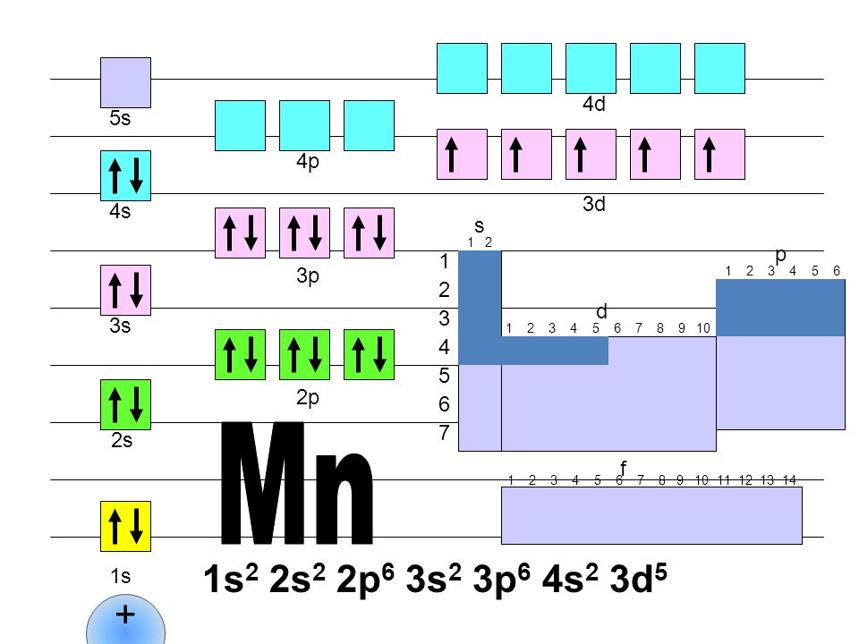 Mn 1s2 2s2 2p6 3s2 3p6 4s2 3d5 + 4d 5s 4p 3d 4s s p 1 3p 2 d 3 3s 4 5