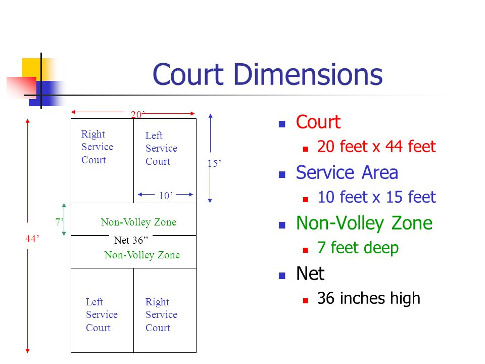 Court Dimensions Court Service Area Non-Volley Zone Net