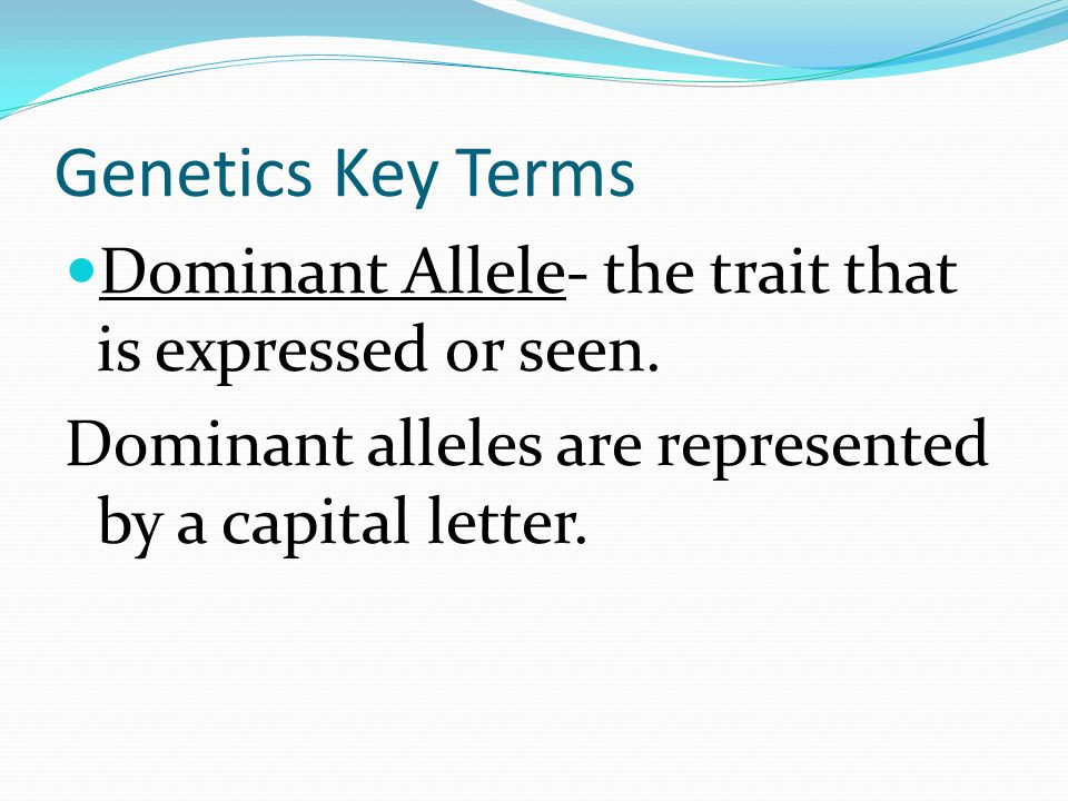 Genetics Key Terms Dominant Allele- the trait that is expressed or seen.
