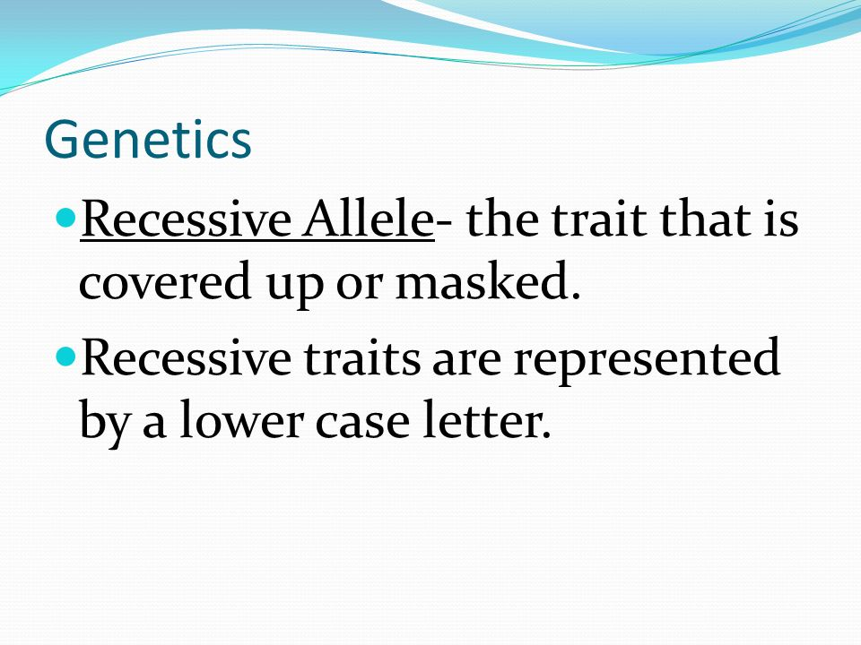 Genetics Recessive Allele- the trait that is covered up or masked.