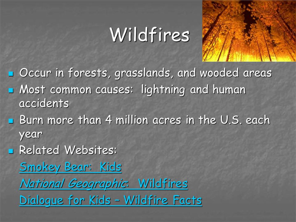 Wildfires Occur in forests, grasslands, and wooded areas