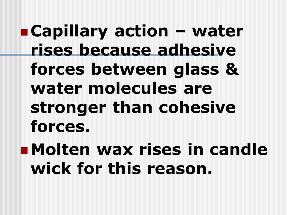 Capillary action – water rises because adhesive forces between glass & water molecules are stronger than cohesive forces.
