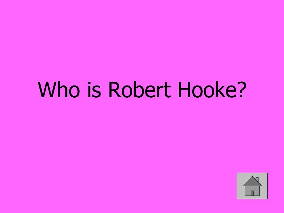 Who is Robert Hooke