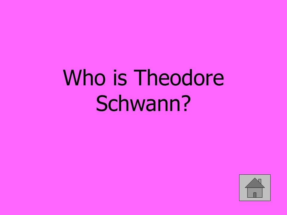 Who is Theodore Schwann