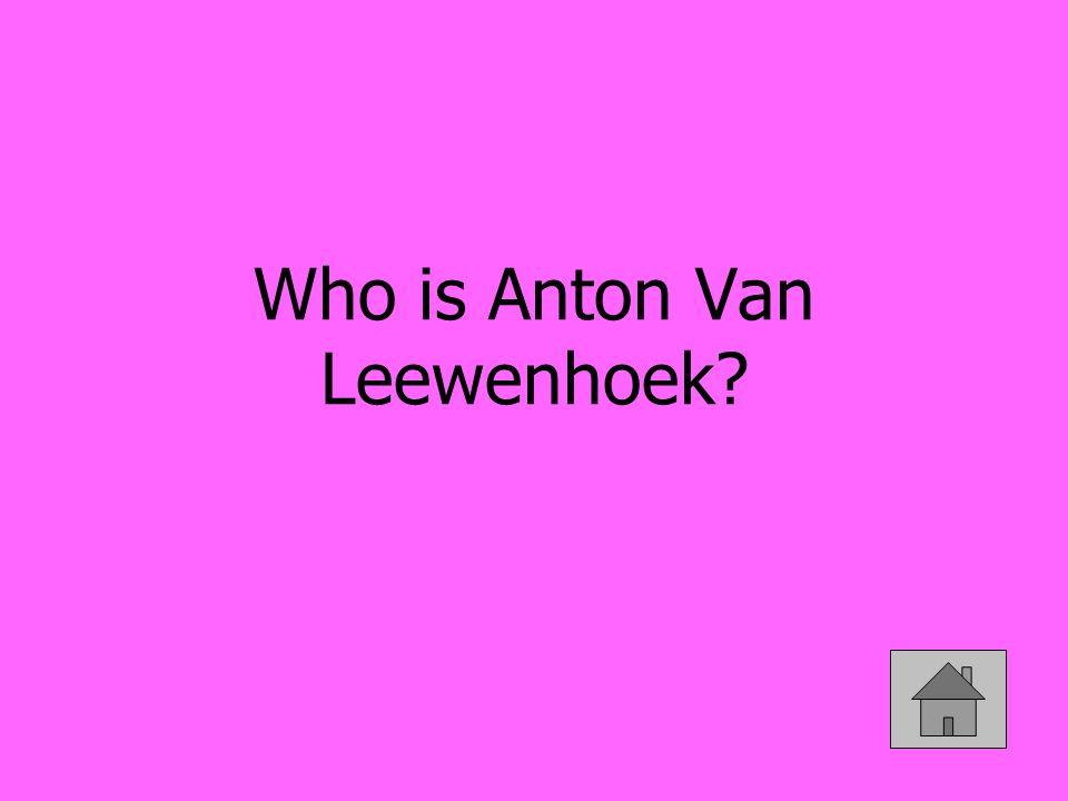 Who is Anton Van Leewenhoek