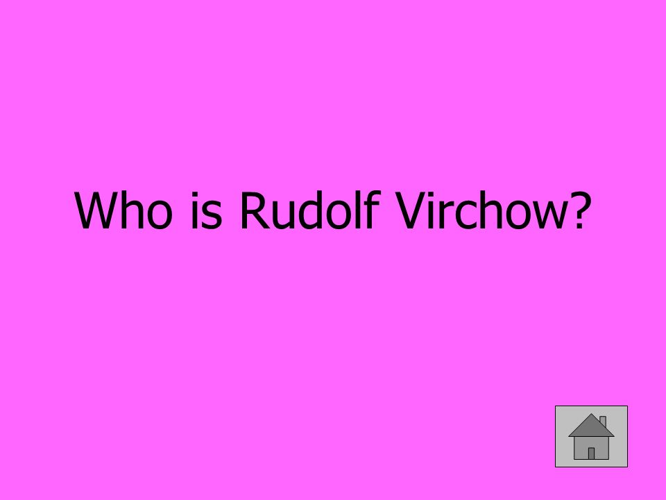 Who is Rudolf Virchow