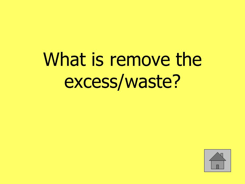 What is remove the excess/waste