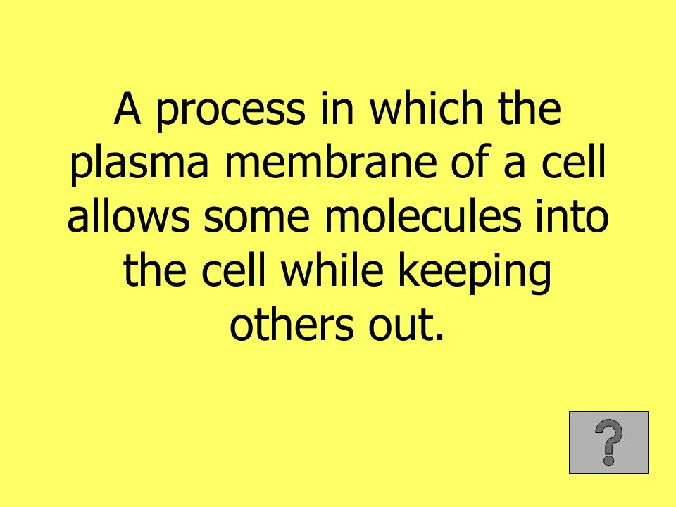 A process in which the plasma membrane of a cell allows some molecules into the cell while keeping others out.
