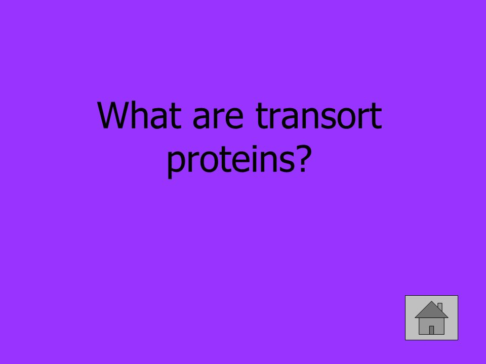 What are transort proteins