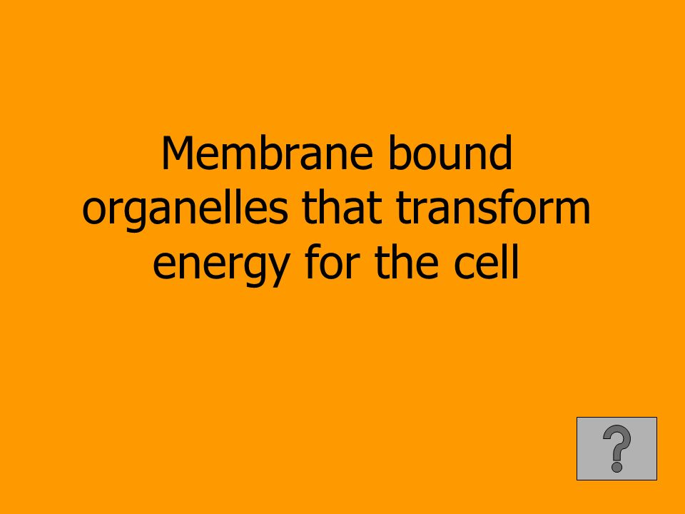 Membrane bound organelles that transform energy for the cell