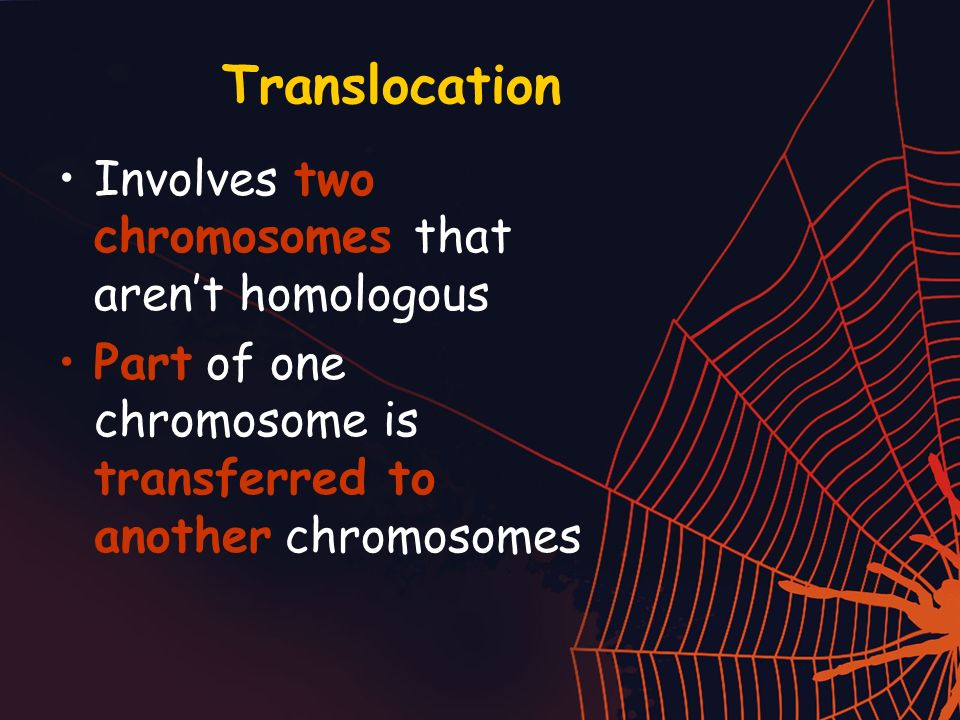 Translocation Involves two chromosomes that aren't homologous