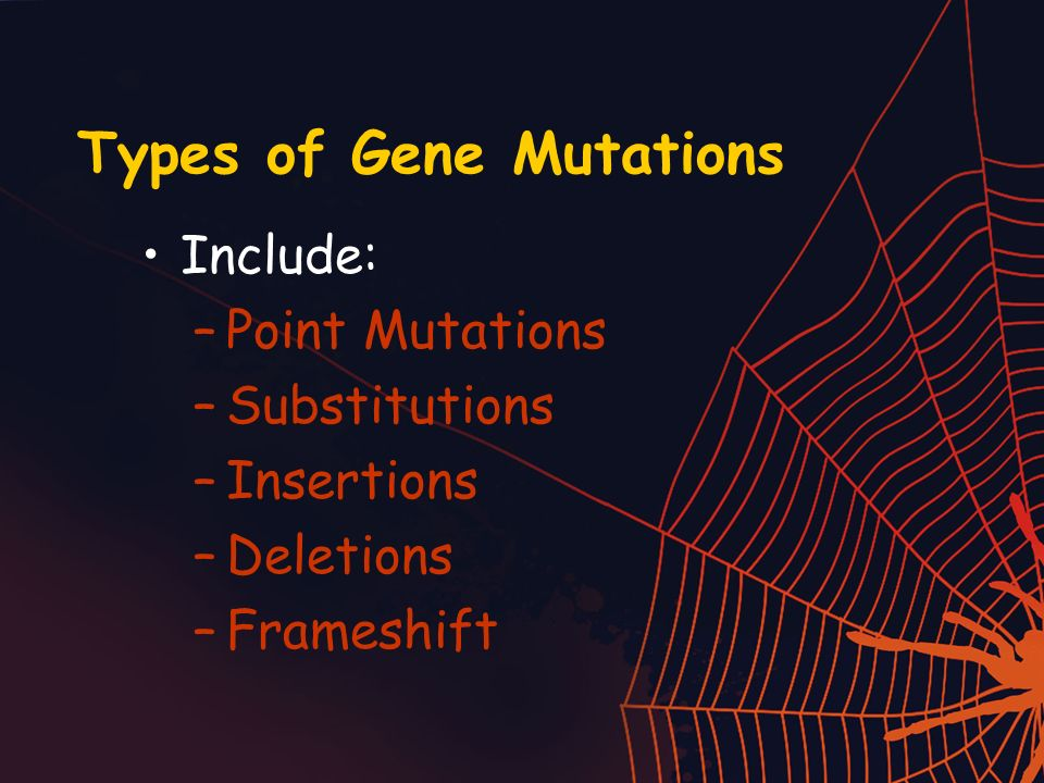 Types of Gene Mutations