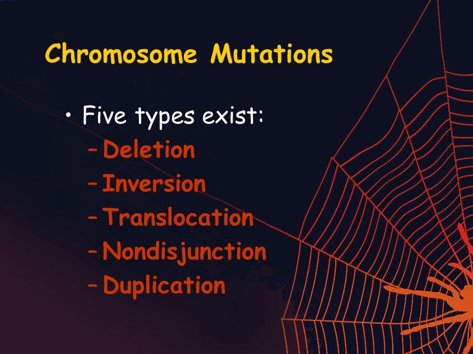 Chromosome Mutations Five types exist: Deletion Inversion