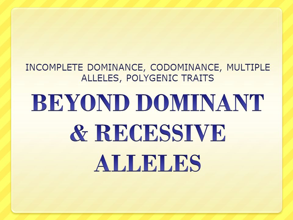 how polygenic traits produce the appearance of blending inheritance essay Discover more types of non-mendelian inheritance such as incomplete dominance and codominance with the amoeba sisters  incomplete dominance, codominance, polygenic traits, and epistasis.