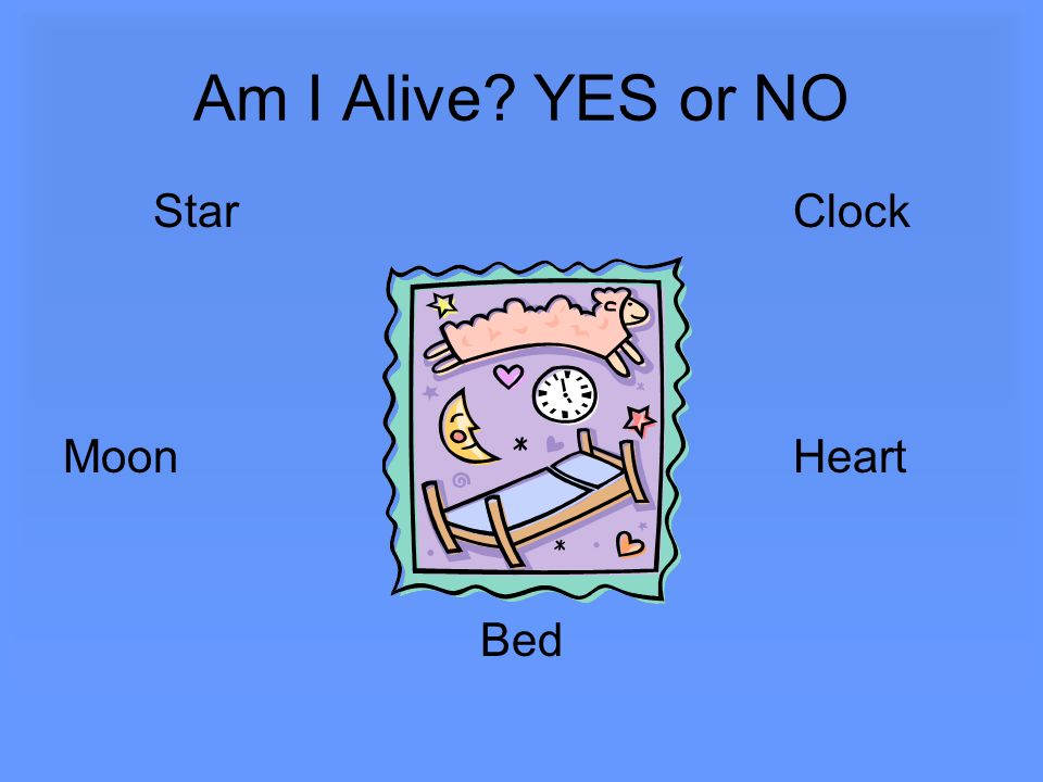 Am I Alive YES or NO Star Clock Moon Heart Bed