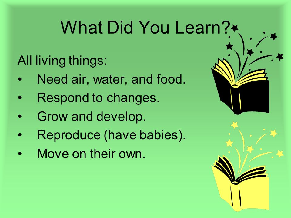 What Did You Learn All living things: Need air, water, and food.
