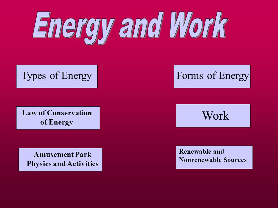 Law of Conservation of Energy Amusement Park Physics and Activities